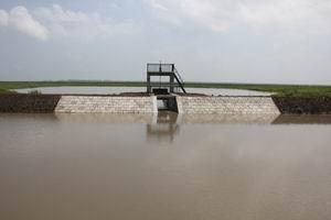 调整大小 东湿地进水闸.JPG
